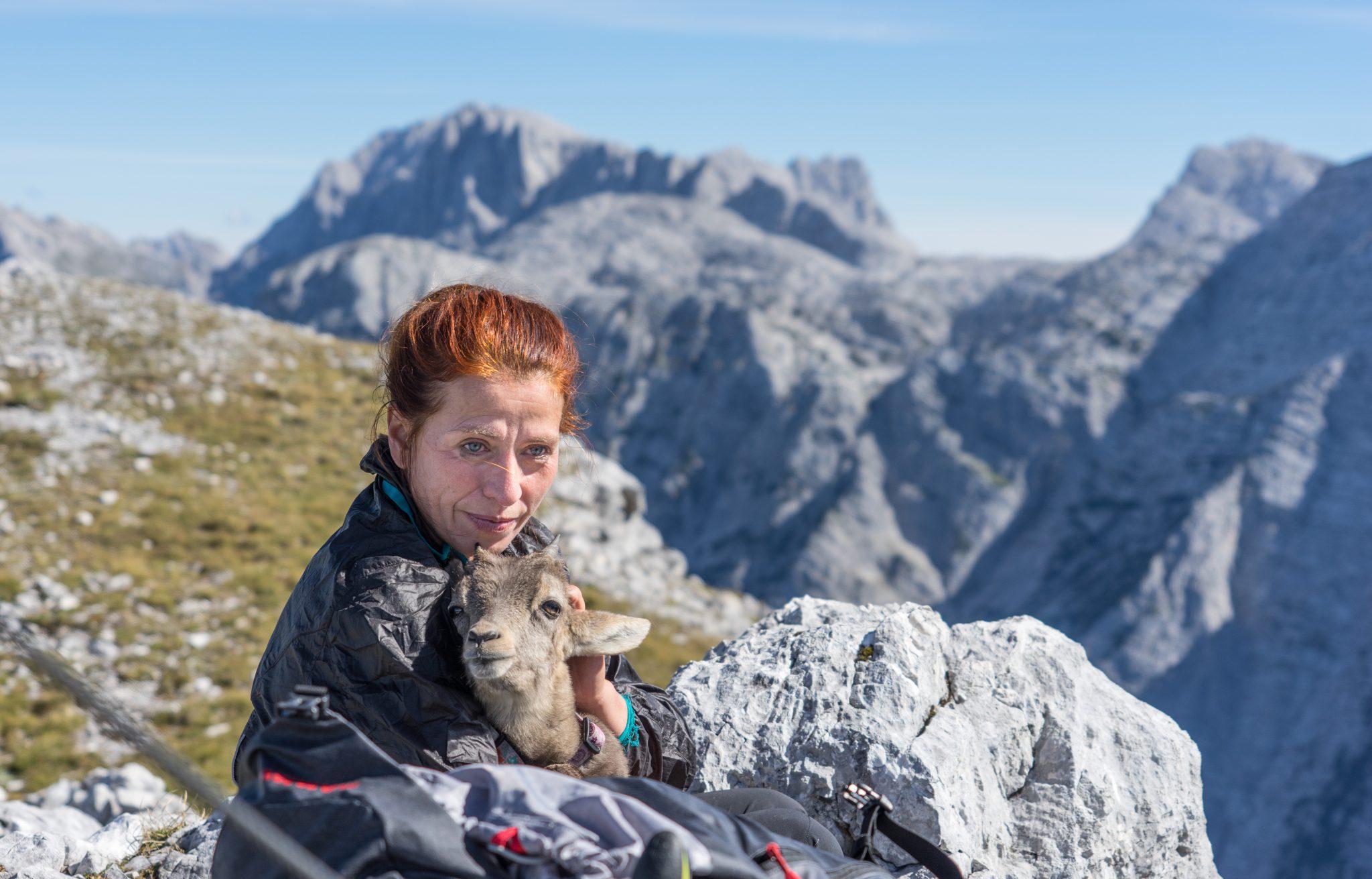 Steinbockbaby Alexa Zwölferkogel Wanderung