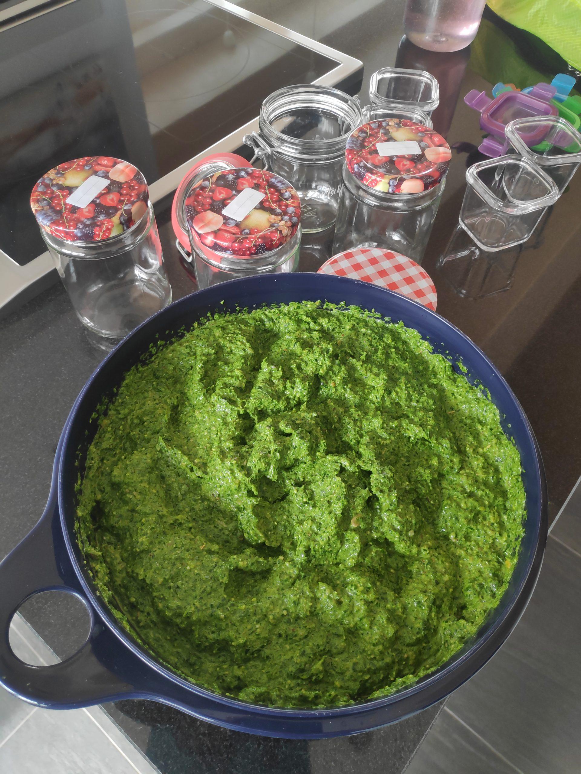 Bärlauch Pesto Produktion